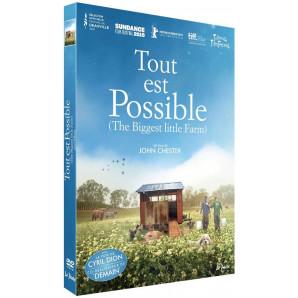 DVD Tout est possible